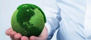 business dans l'écologie