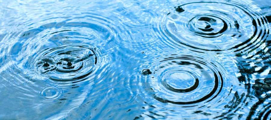 role eau environnement