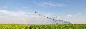 Pivot d'irrigation