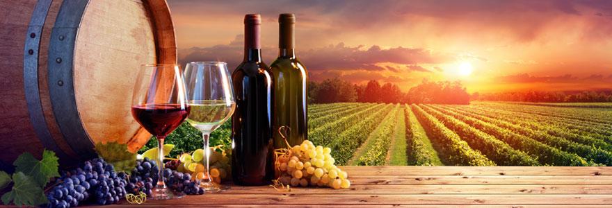 Les meilleurs vins